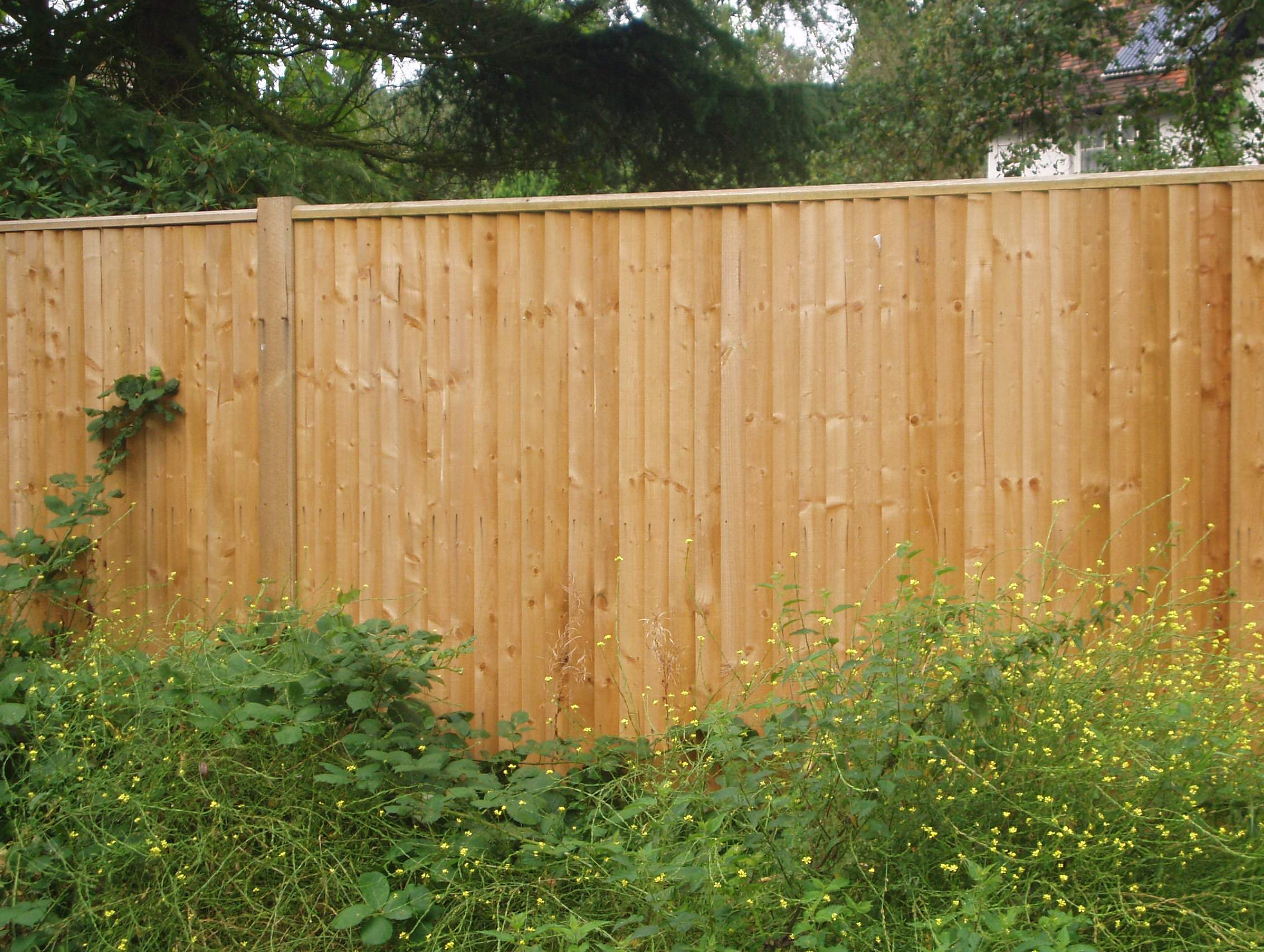 All Timbers Pressure Treated Non Toxic Compatible Ensure