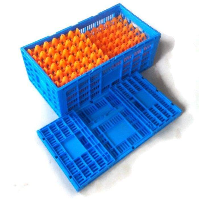 Amazing Folding Egg Carry Crate Eggs Ideal