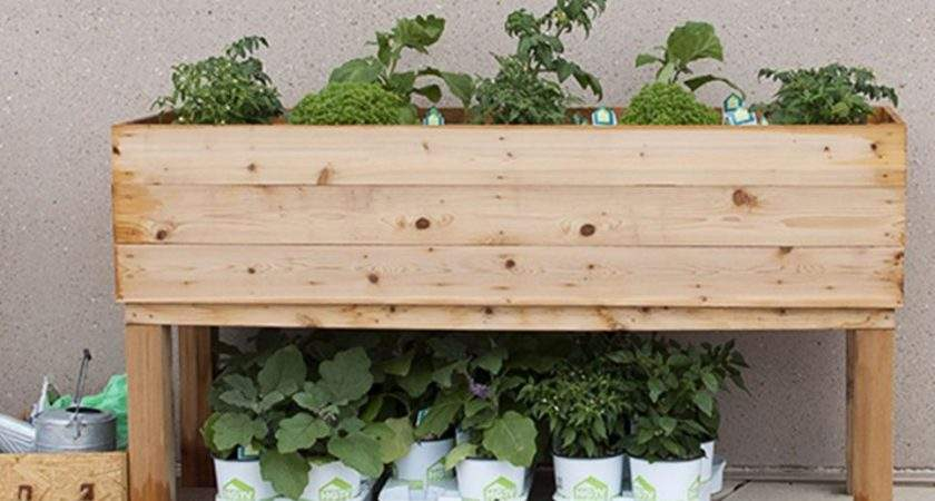 Diy Wood Planter Build Elevated Wooden