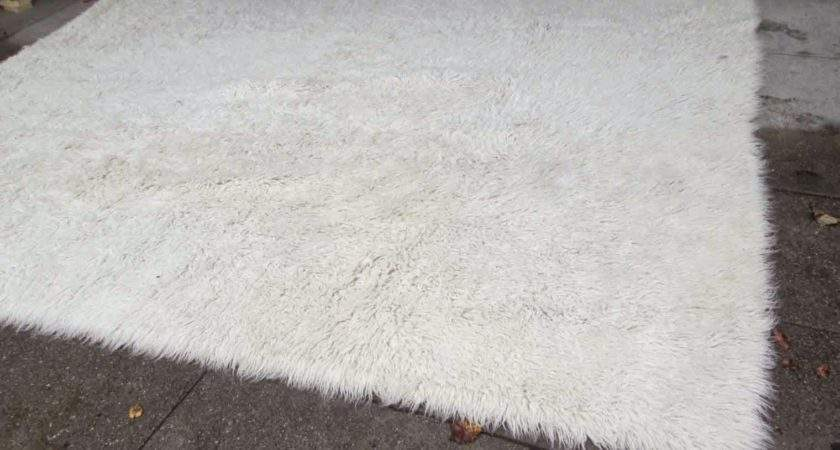 Furniture Collectibles Large White Long Length Shag Rug