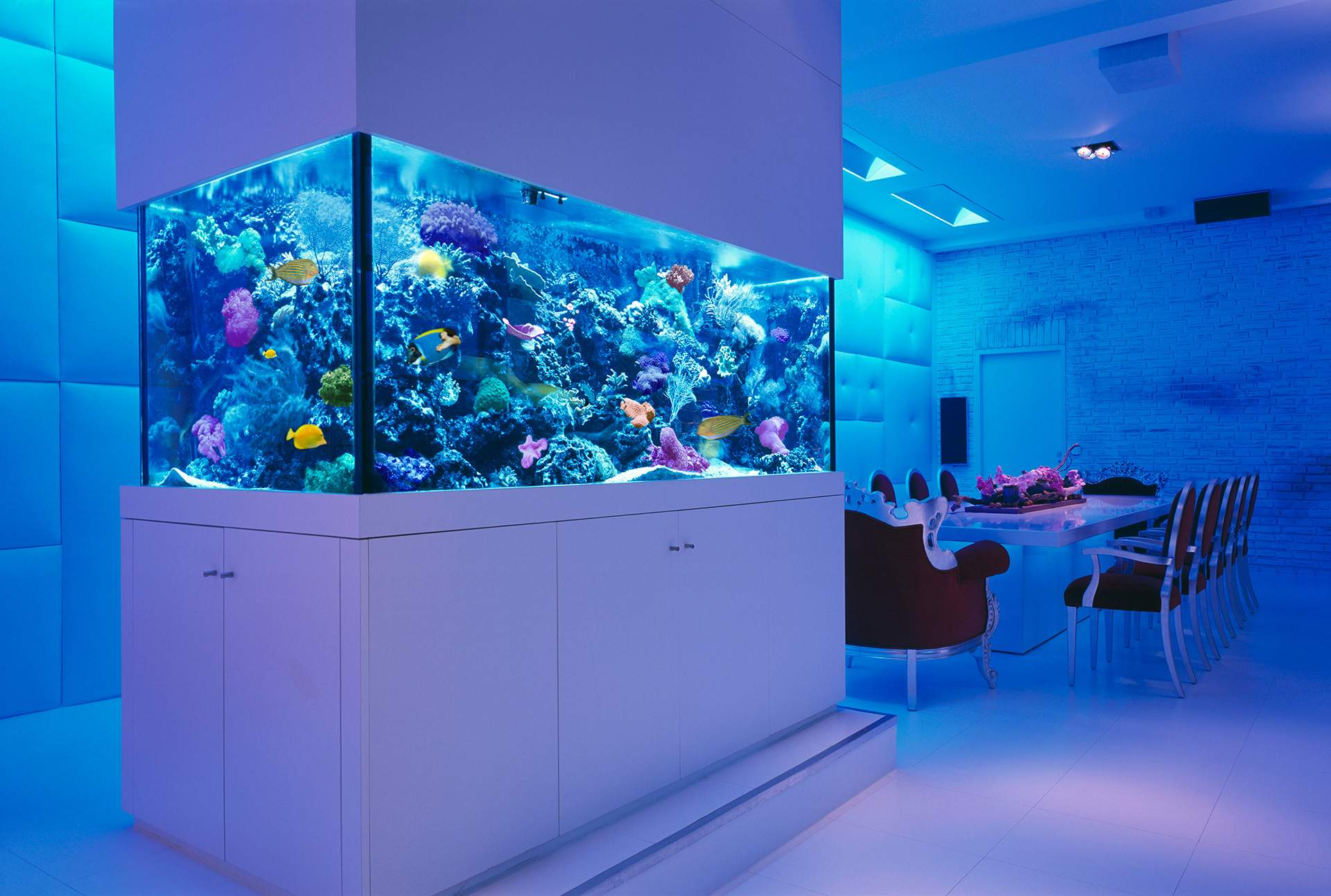 Incredibly Awesome Ideas Beautify Your Home Aquariums