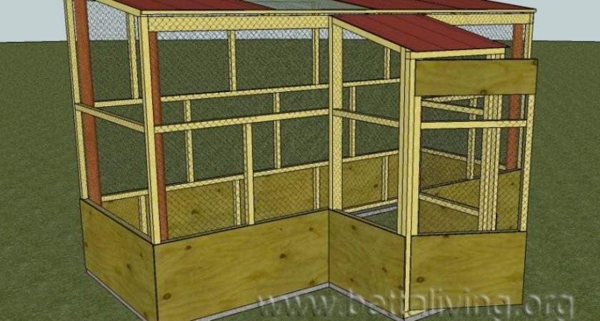 Popular Hobby Past People Kept Single Bird Within Cage