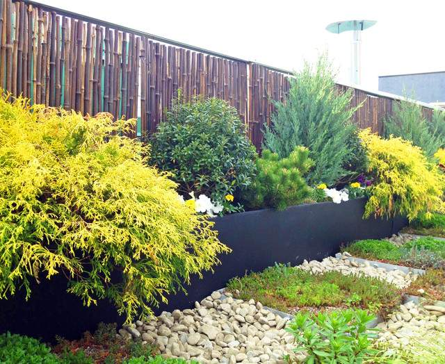 Terrace Sedum Trays Bamboo Fence Container Contemporary Deck
