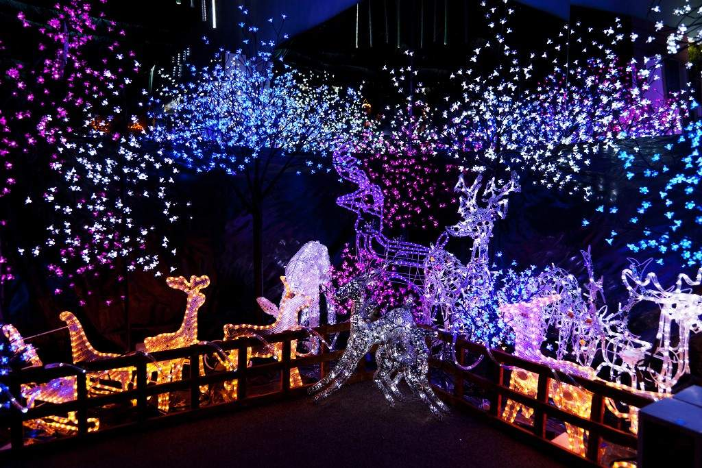 Thought Give Few Ideas Regarding Outdoor Christmas