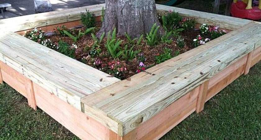 Tree Bench Ideas Added Outdoor Seating